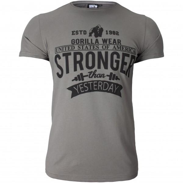 Футболка Hobbs T-shirt Gray